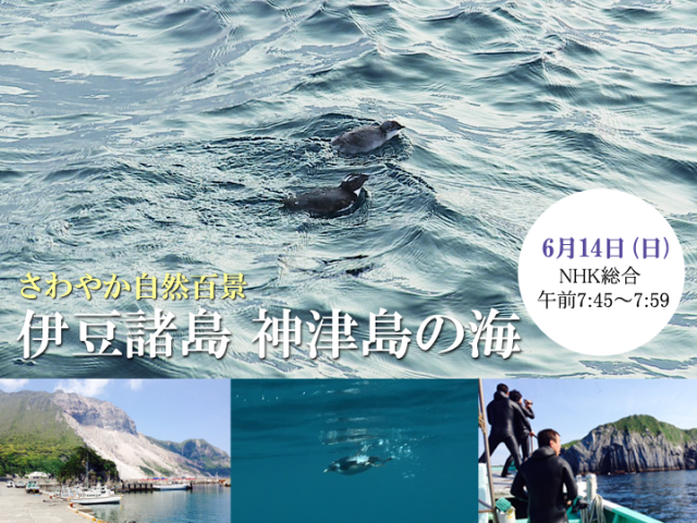 NHKさわやか自然百景 神津島