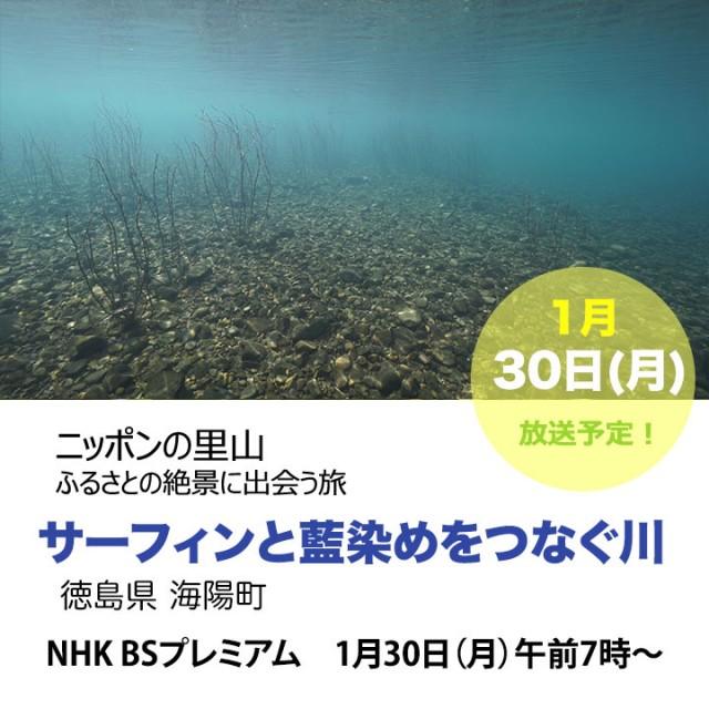 satoyama_kaiyou