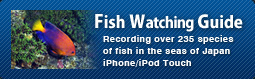 Fish Watching Guide iPhone