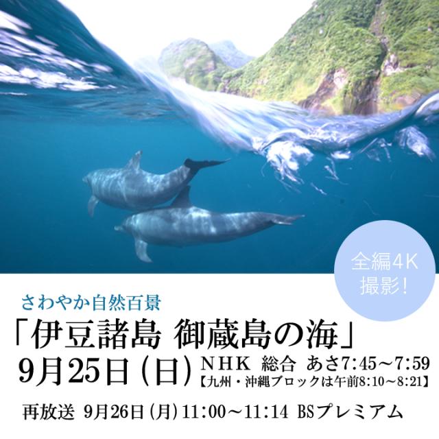さわやか自然百景「御蔵島の海」